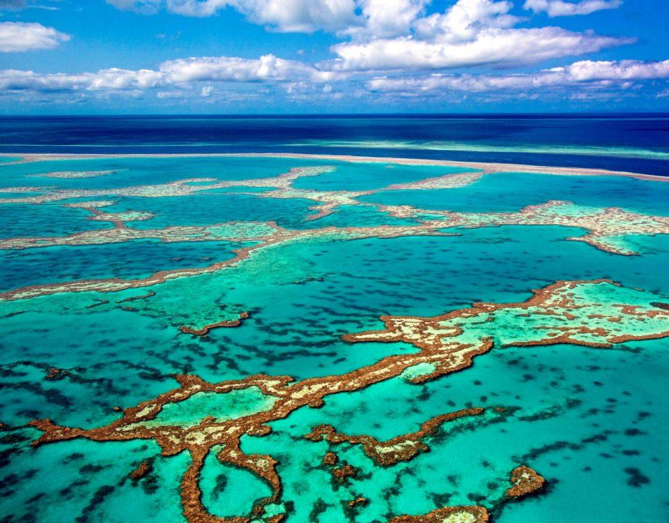 Viajar a Australia y conocer la Gran barrera de coral